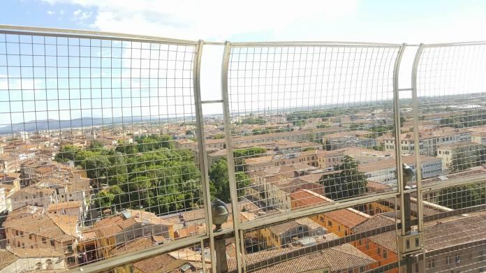 mopana-Pisa-Tower-03