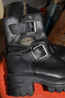 Full disclosure: Moto boots i've craved, but do not own. Yet.