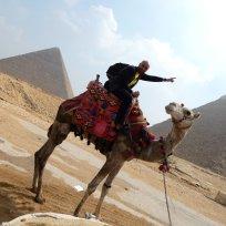 Skander alias Ramses II
