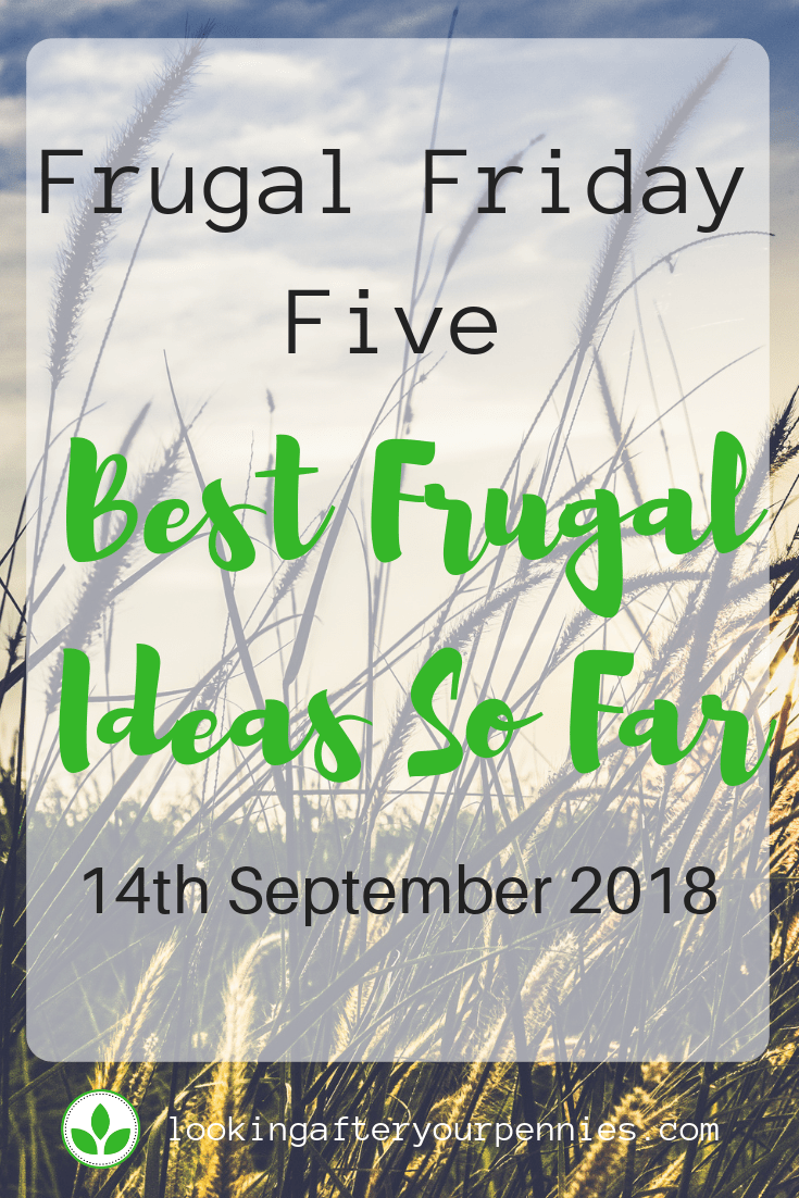 Frugal Friday Five - My Best Frugal Ideas So Far! Take a look at my favourites from the series. #frugalliving #moneysaving
