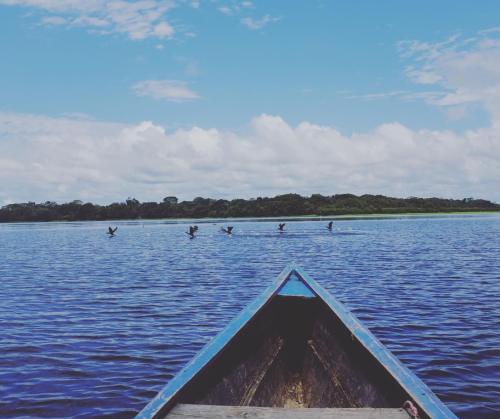No Lago Tarapoto