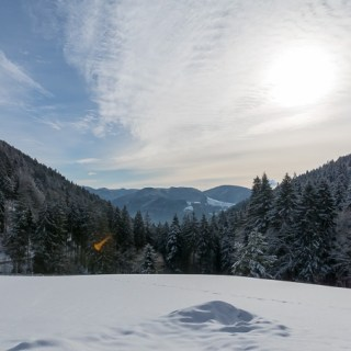 Winter Wonderland in the Black Forest, Tasty Food at an Organic Guesthouse, and First Attempts at Cross-Country Skiing
