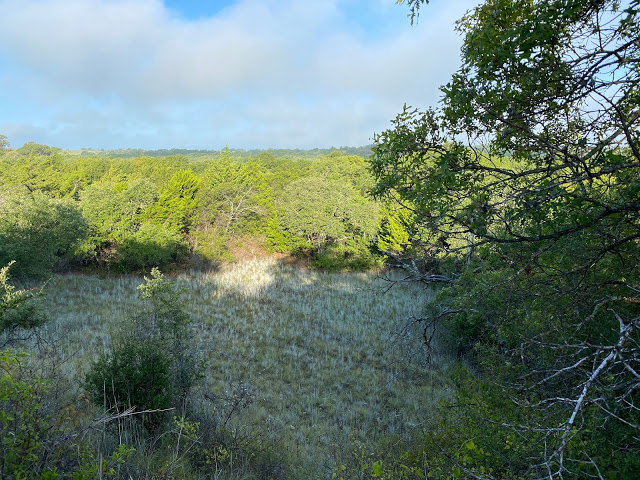 Great day in the field on the LBJ National Grasslands