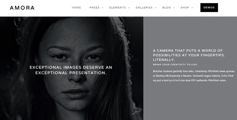 Amora WordPress Theme