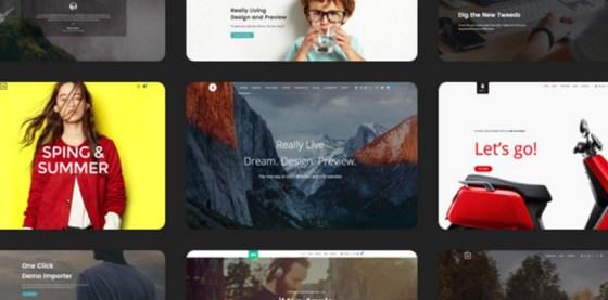 Alink | Customizable WordPress Theme