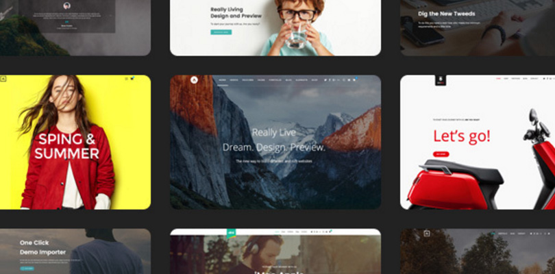 Alink | Customizable WordPress Theme