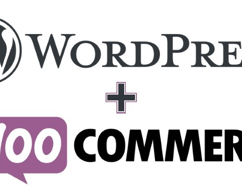WooCommerce Addons to Accept Credit Card Payments with WordPress