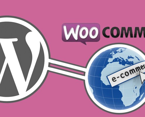 woocommerce-addons-for-accepting-payments-feature