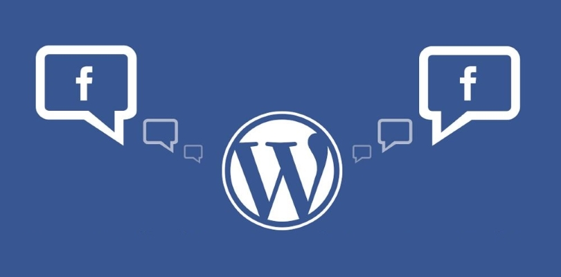 Efficient Use of Facebook Potential on Your WordPress Site