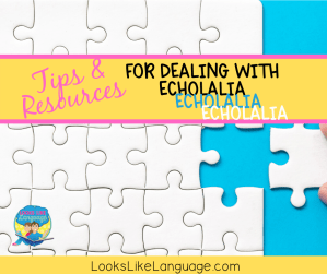 the puzzle of autism, echolalia tips, speech therapy