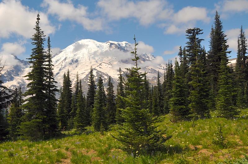 Mt. Rainier National Park, WA day trip from Portland