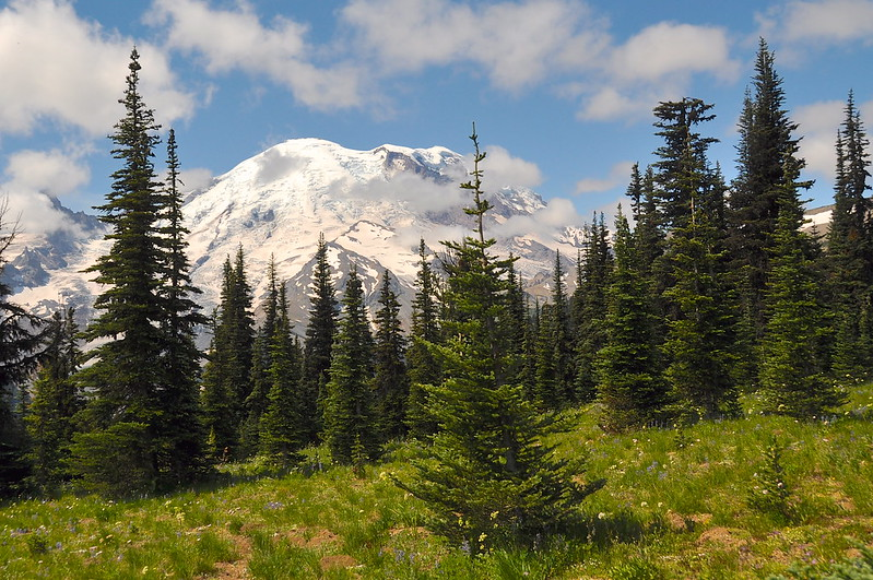 Mt. Rainier National Park, WA day trip from Portland