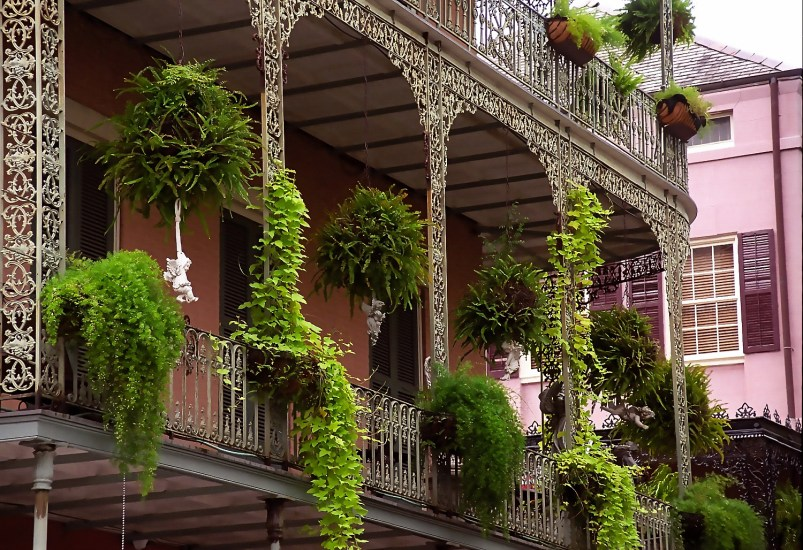"New Orleans - French Quarter ""Cast-Iron Balcony"""