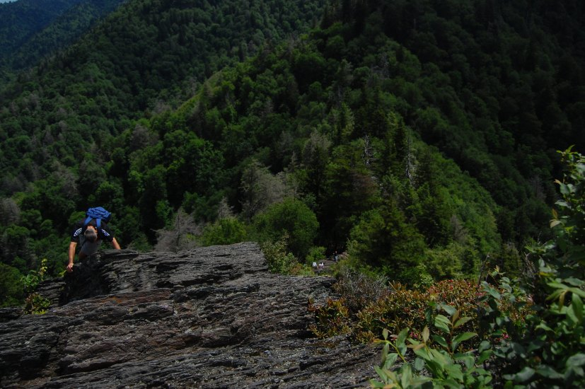 In Smokies one of the best things about the Smoky mountains is its trail routes.