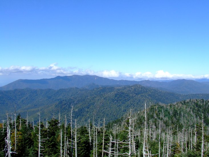 Visit this place to experience a stunning 360-degree view of the Smokies.
