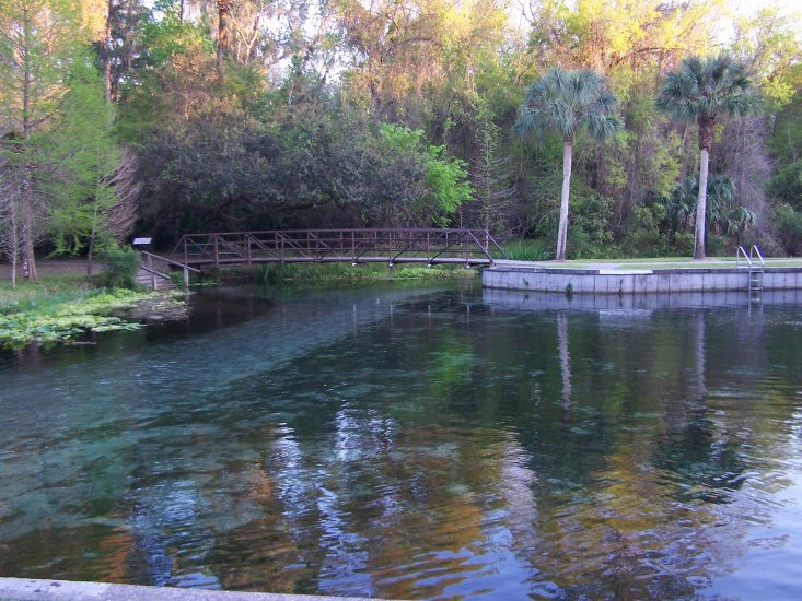 A great place for explorations and simply enjoying in Orange Park, FL.