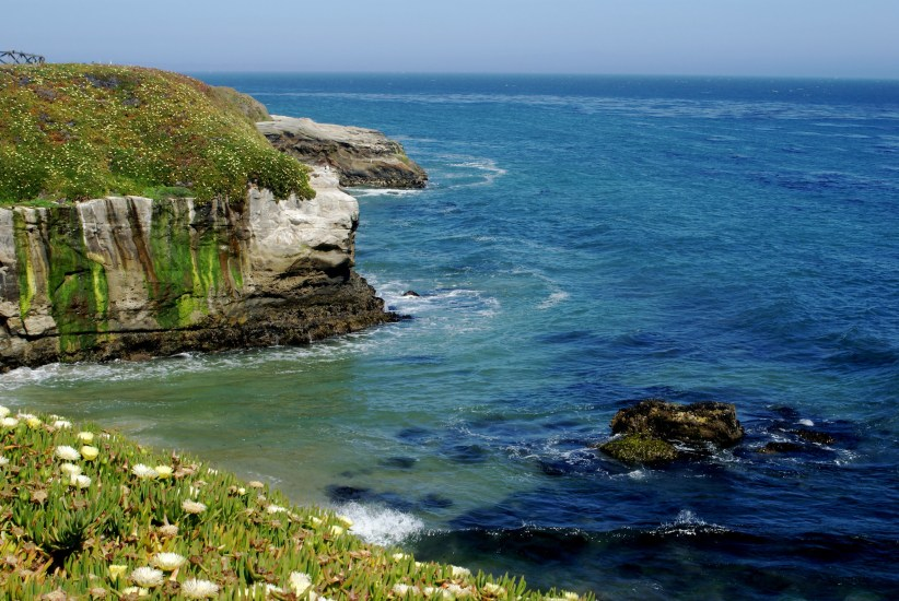The West Cliff Drive is something of a crowning jewel of Santa Cruz.