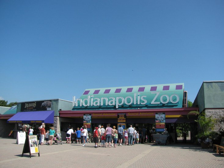 You can even find exhibits on red pandas and go bird watching at the Indianapolis zoo.