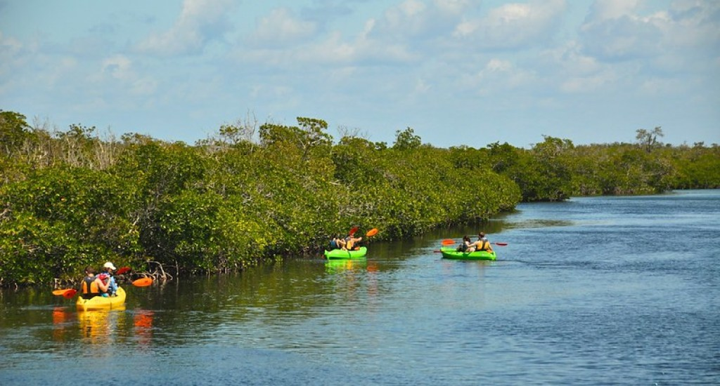 The John Pennekamp Coral Reef State Park and the Florida Keys National Marine Sanctuary, are really great places to visit