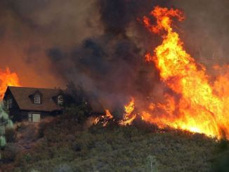 California wildfires, coping with disaster, optimisim, tools to help survivors