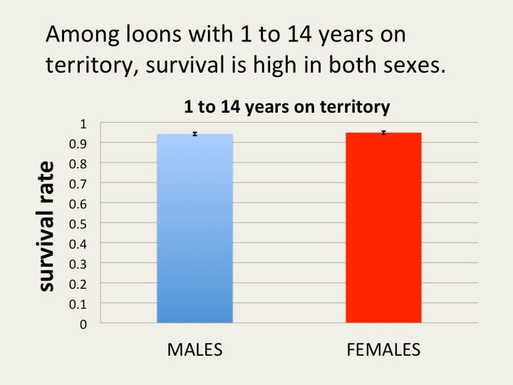 young males and females do not differ in survival rate