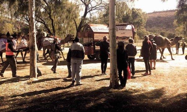 Camel-ride-alice-to-melburne