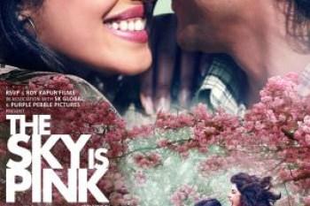 我的粉紅人生 電影海報
