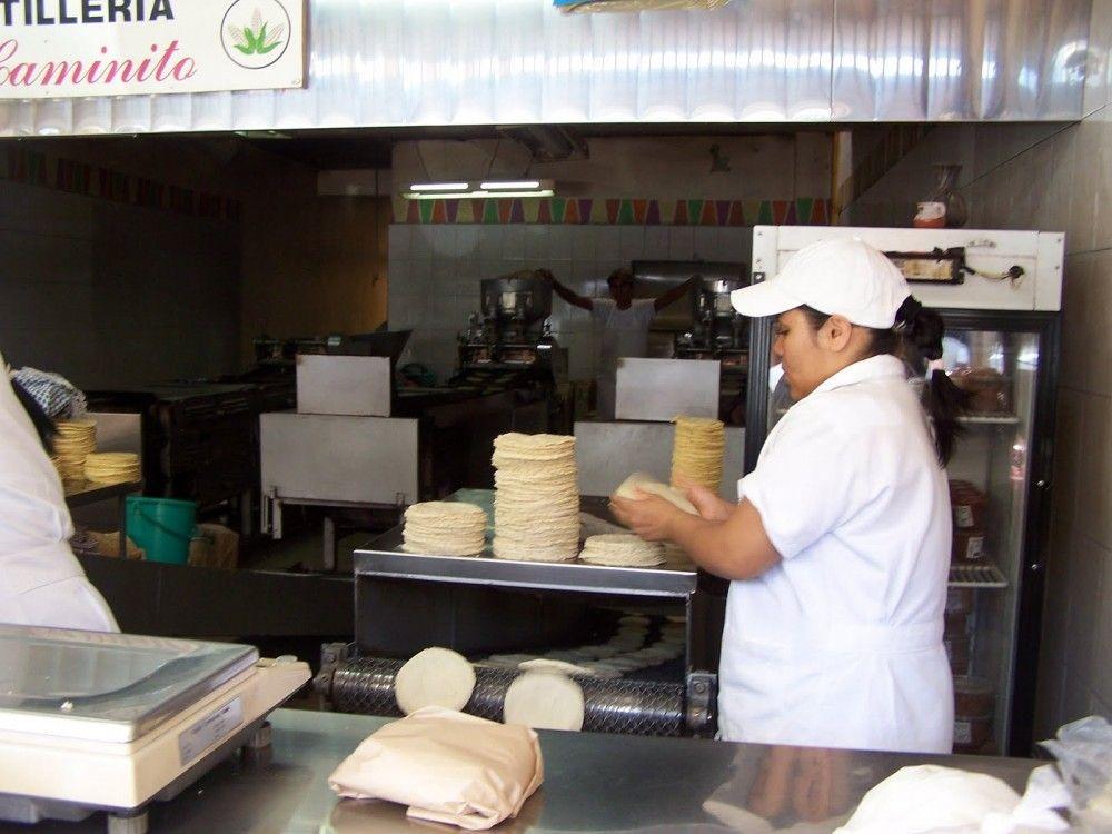 Subsidio a transporte y tortilla permitiría recuperación salarial: CTM - Internet