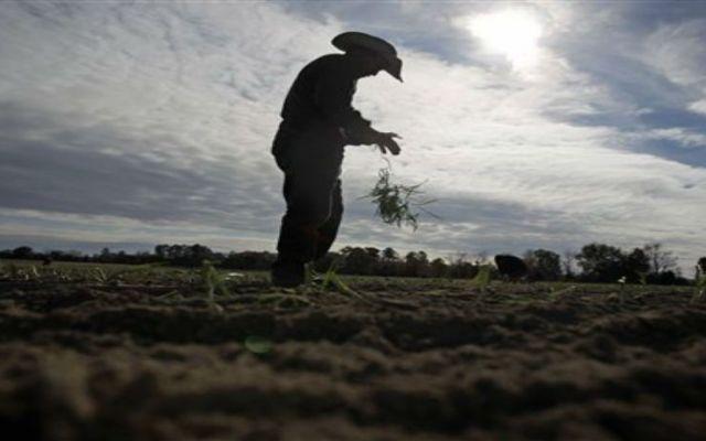 Rescatan a 54 jornaleros menores de edad en Coahuila - Foto de La Mega
