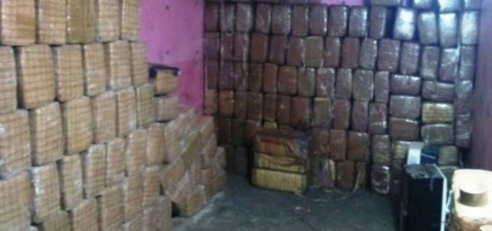 Decomisan más de 2 toneladas de mariguana en Tamaulipas