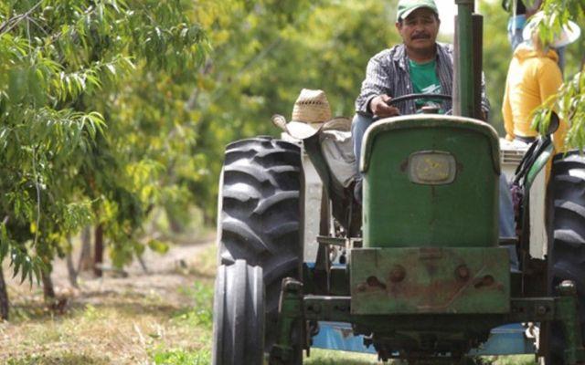 La SAGARPA anuncia programa Cruzada por la Productividad del Campo - Foto de cumbre.com.mx