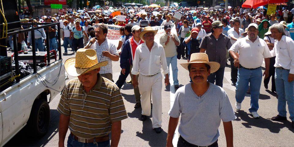 Prevén seis manifestaciones en la Ciudad de México - Foto de animalpolitico.com