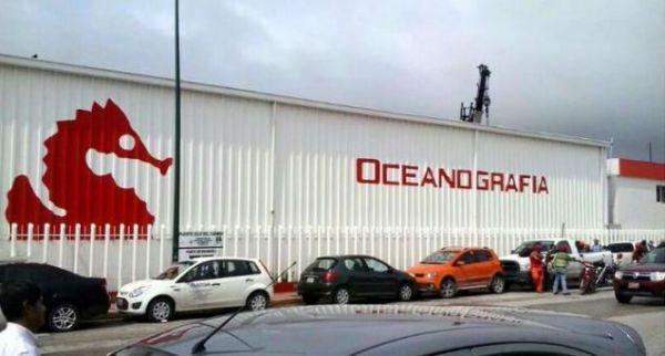Niegan amparo a socio de Oceanografía - Instalaciones de Oceanografía - Foto de 24-horas