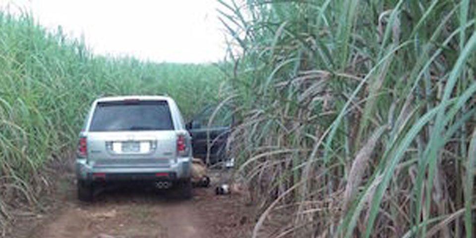Encuentran 8 cuerpos en los límites de Veracruz y Oaxaca - Foto de News Oaxaca