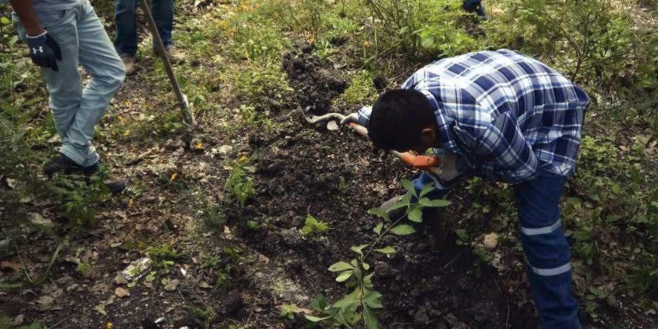 Confirma PGR hallazgo de cuatro cuerpos en fosas de Guerrero - Foto: internet