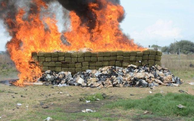 Incineran más de una tonelada de narcóticos en Nayarit - Foto de internet