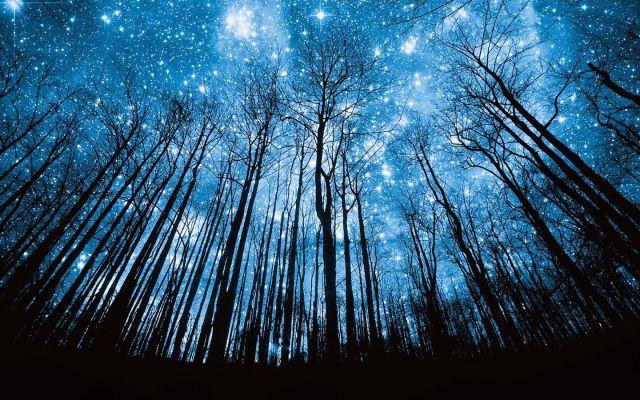 Hoy habrá lluvia de estrellas