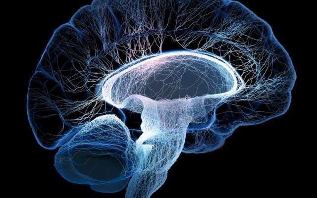 Mexicanos desarrollan proyecto para mejorar el diagnóstico de la epilepsia
