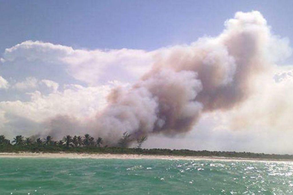 Incendio en Holbox afecta 20 hectáreas de frágiles ecosistemas