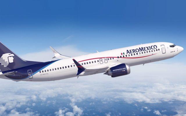 Explica Aeroméxico lo sucedido con la víbora en el avión - Foto de archivo