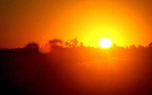 Este junio el cuarto mes más caluroso en los últimos 137 años - Foto de AP
