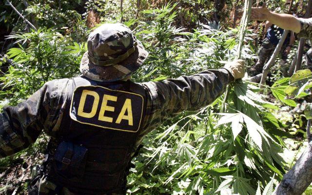 Mantiene DEA en la mira a ocho capos mexicanos