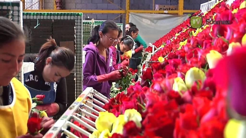 Flores al doble de precio por 14 de febrero - Foto de Internet
