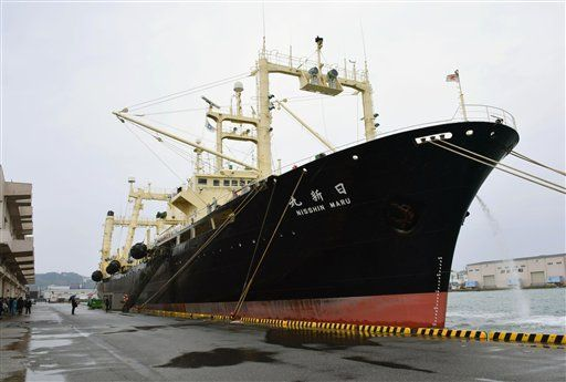 Flota de Japón cazó 333 ballenas en la antártida - Foto de Souichiro Tanaka/Kyodo News via AP