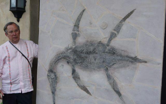 Alcalde del PAN presta su nombre para bautizar a especie de dinosaurio