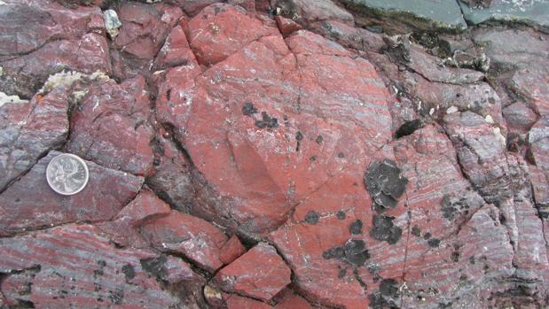 Desentierran al fósil más antiguo de la Tierra