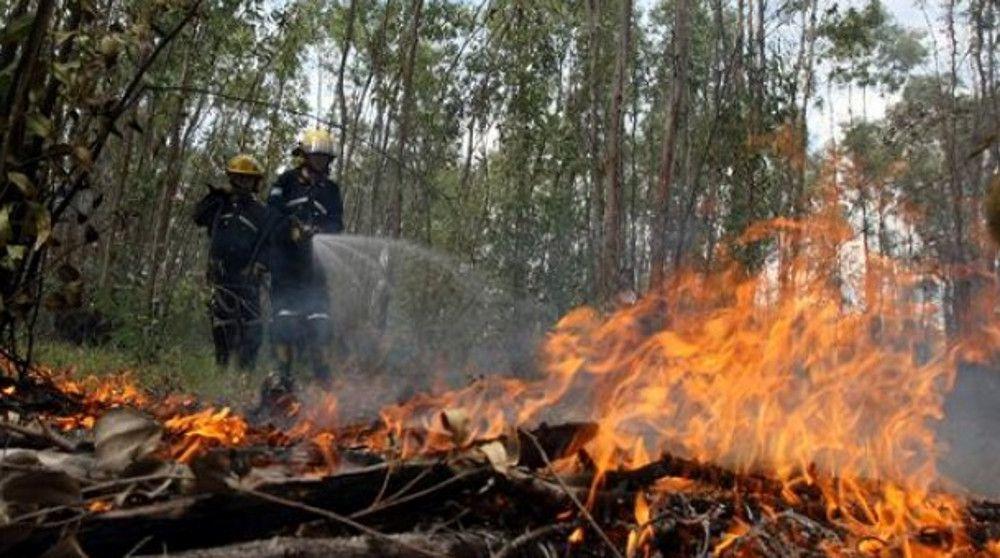 Muere brigadista al combatir incendio forestal en Jalisco - Foto de Noticieros Televisa