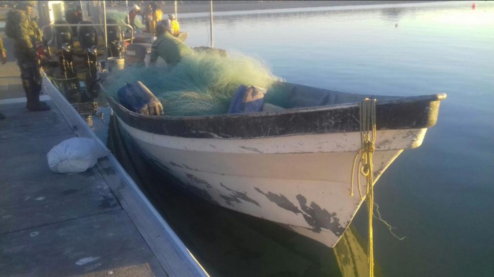 Detienen a cuatro por pesca ilegal en refugio de la vaquita marina