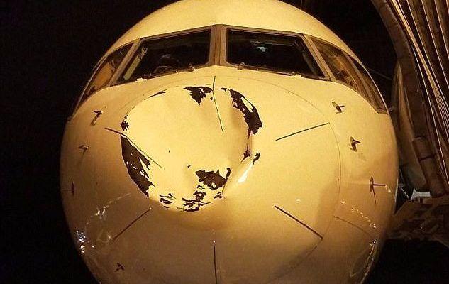 Avión que trasladaba a Oklahoma Thunder choca con pájaro en pleno vuelo - Foto de internet