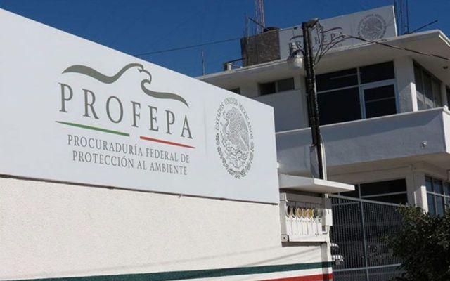 Sancionan a cinco hoteles en Los Cabos por incumplir obligaciones ambientales